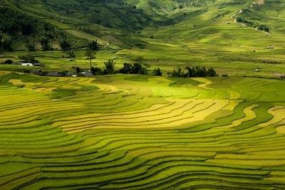 ベトナム サパ 人気の移住地