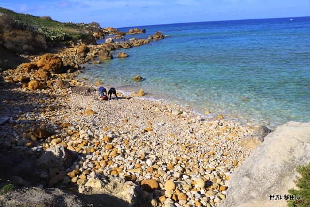 マルタ ゴゾ観光 サンブラス湾(San blas bay) サンブラスビーチ(San Blas Beach)行き方